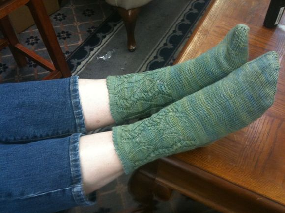 New Socks Dau
